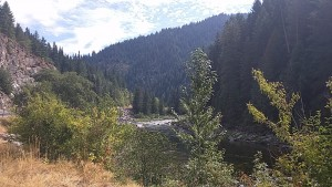 Clearwater River along Highway 12.